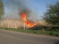Požár břehů potoka u Horních Bučic 2011